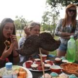 8fe70-picnicmovember068