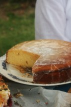 Lemon Drizzle Cake. Goldtoast March Picnic at Flat Rock Park  Currumbin Tugun Gold Coast.