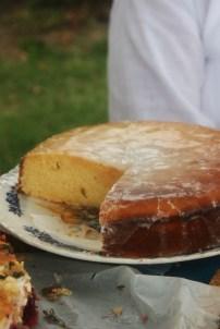 Lemon Drizzle Cake. Goldtoast March Picnic at Flat Rock Park Currumbin Tugun Gold Coast.