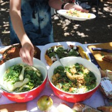 Goldtoast Picnic for Lisa Goynes Birthday Currumbin. We are in the Crave Gold Coast Directory (34)