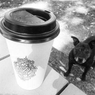 burgster coffee